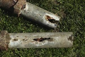 korzenie kanalizacja 1